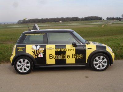 BUMBLE BEE MINI