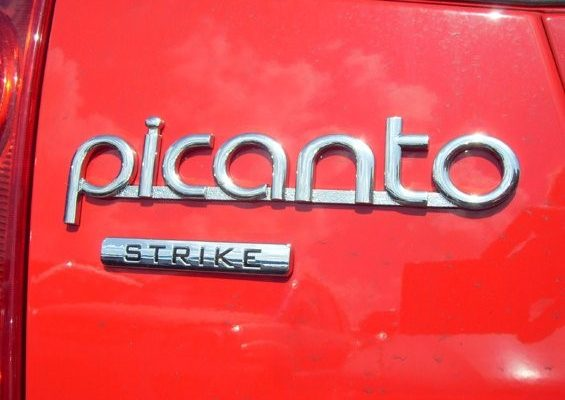Kia Picanto Badge